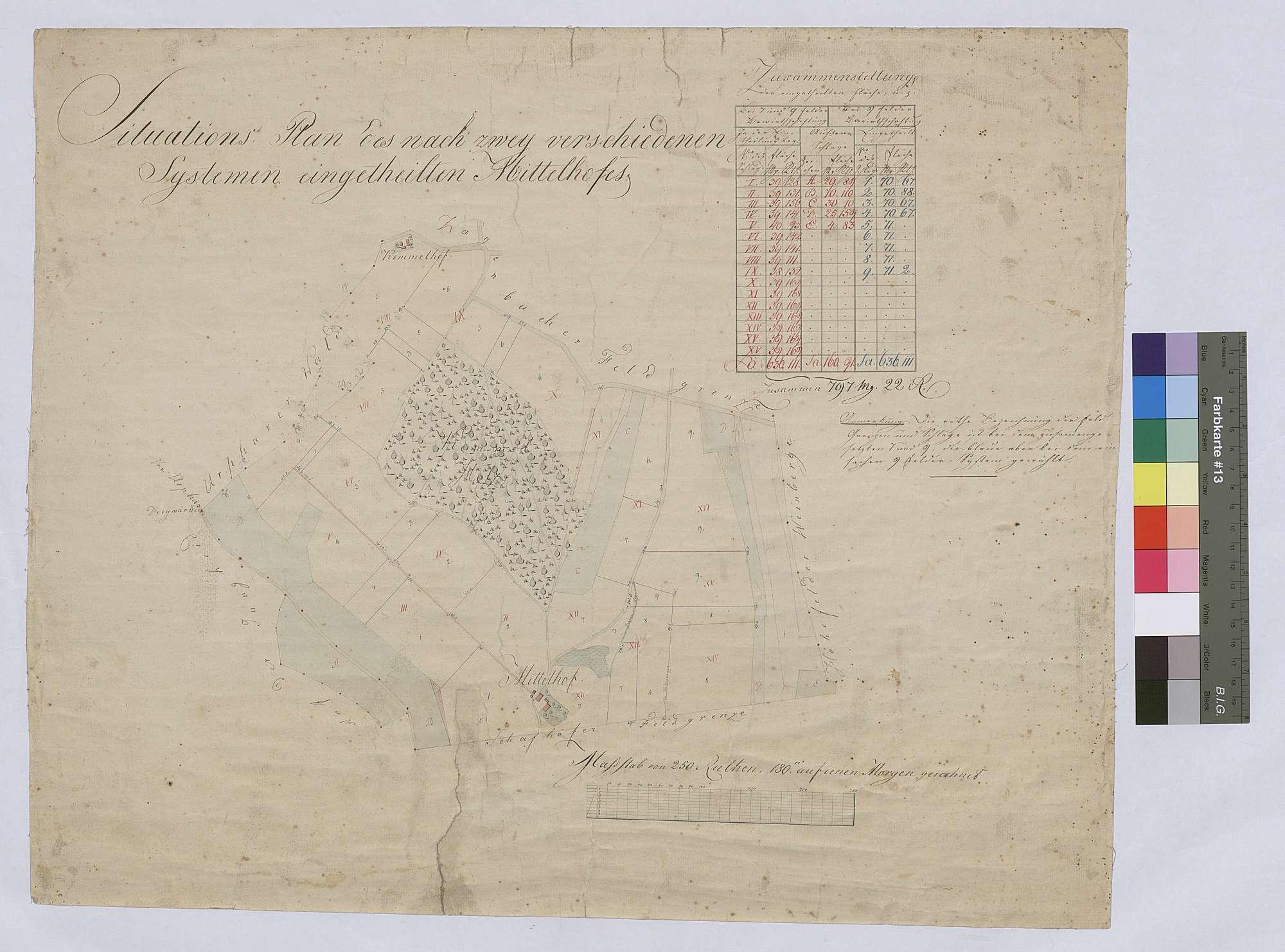 Situationsplan des nach zwei verschiedenen Systemen eingeteilten Mittelhofs (Inselkarte), Bild 1