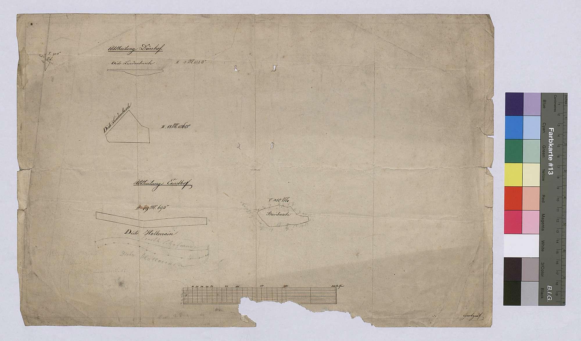 Rodung der Geißtannen (Rücktitel; Inselkarte), Bild 1