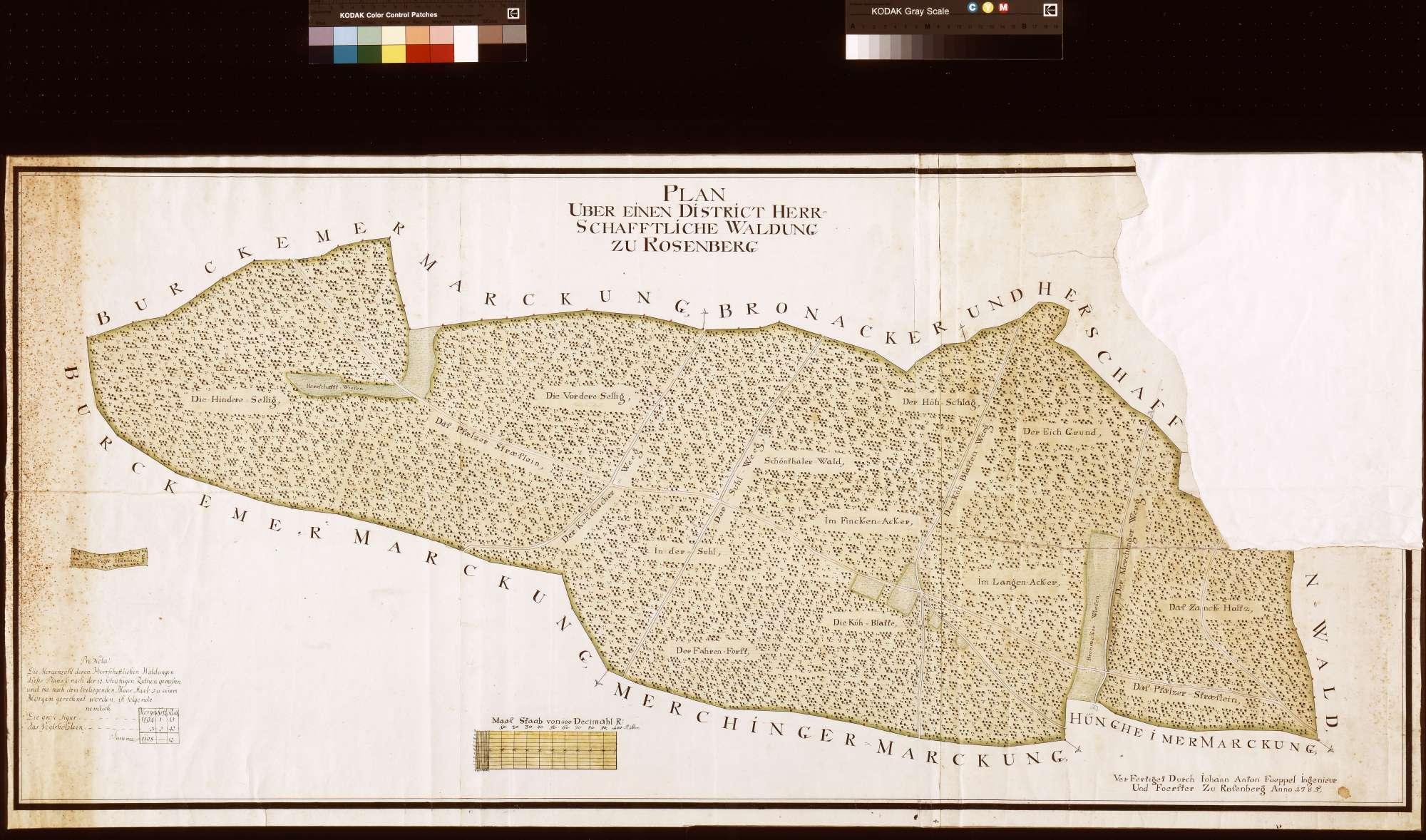 Distrikt herrschaftliche Waldung zu Rosenberg (Inselkarte), Bild 1
