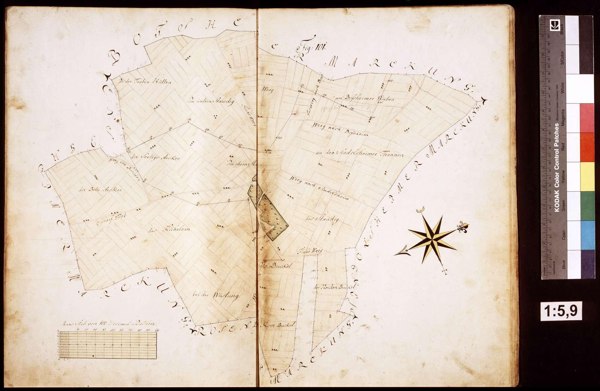Rosenberg: Geometrische Aufnahme der löwensteinischen Gebäude und Grundstücke im Amt Rosenberg, Bild 2