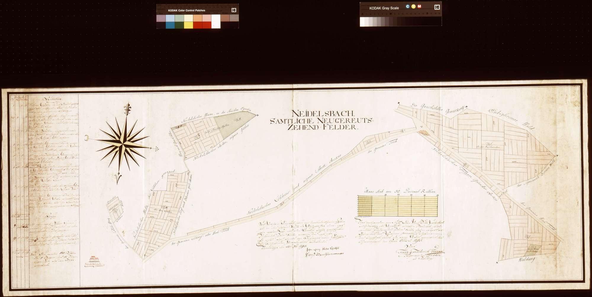 Neidelsbach: Sämtliche Neugereutszehntfelder (Inselkarte), Bild 1