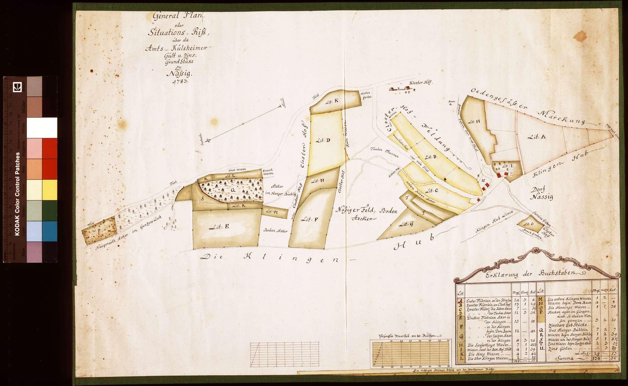 Generalplan oder Situationsriss über die Amt Külsheimer Gült- und Zinsgrundstücke zu Nassig (Inselkarte), Bild 1