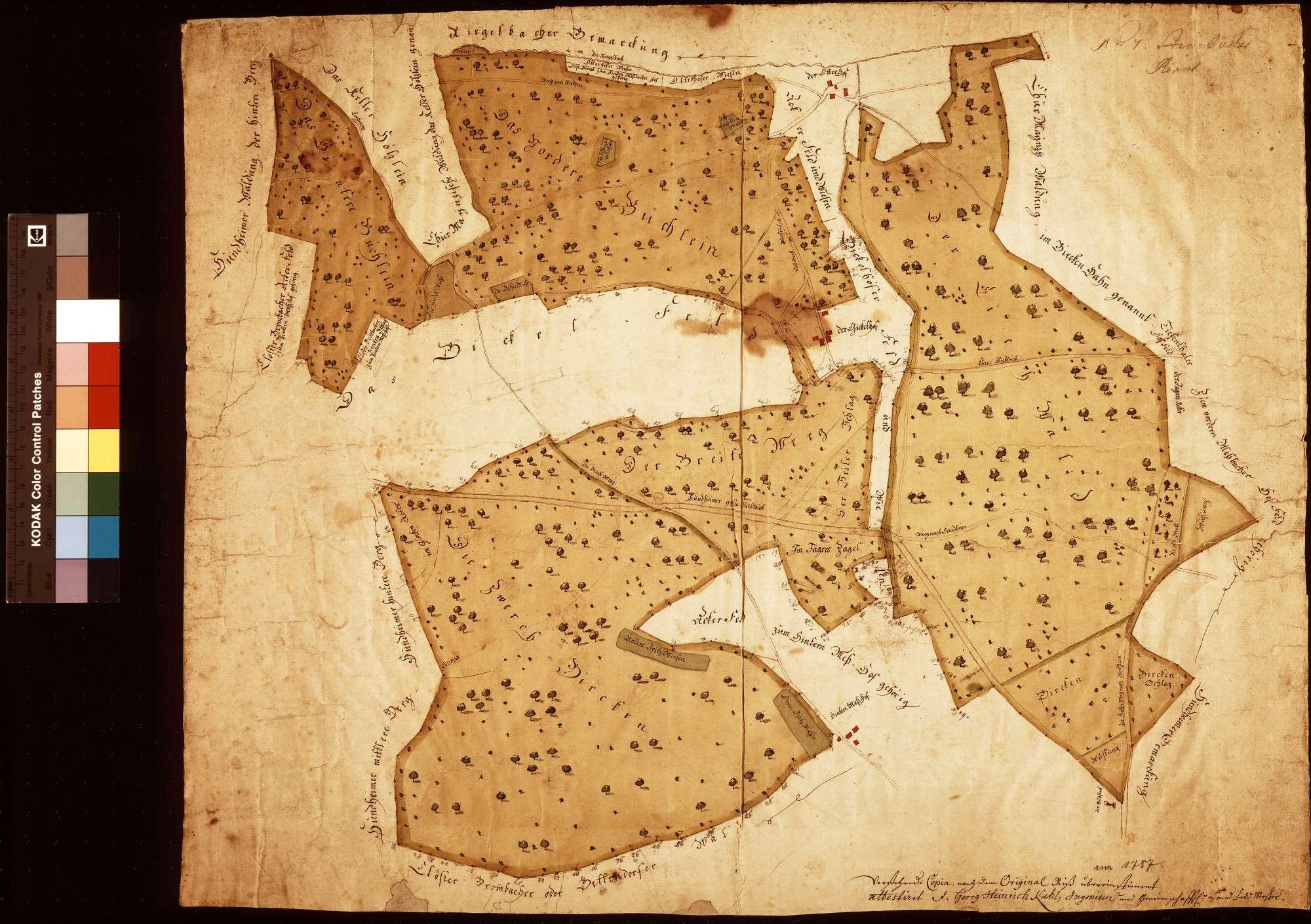 [Hintere Waldung des Steinbacher Forsts] (Inselkarte), Bild 1