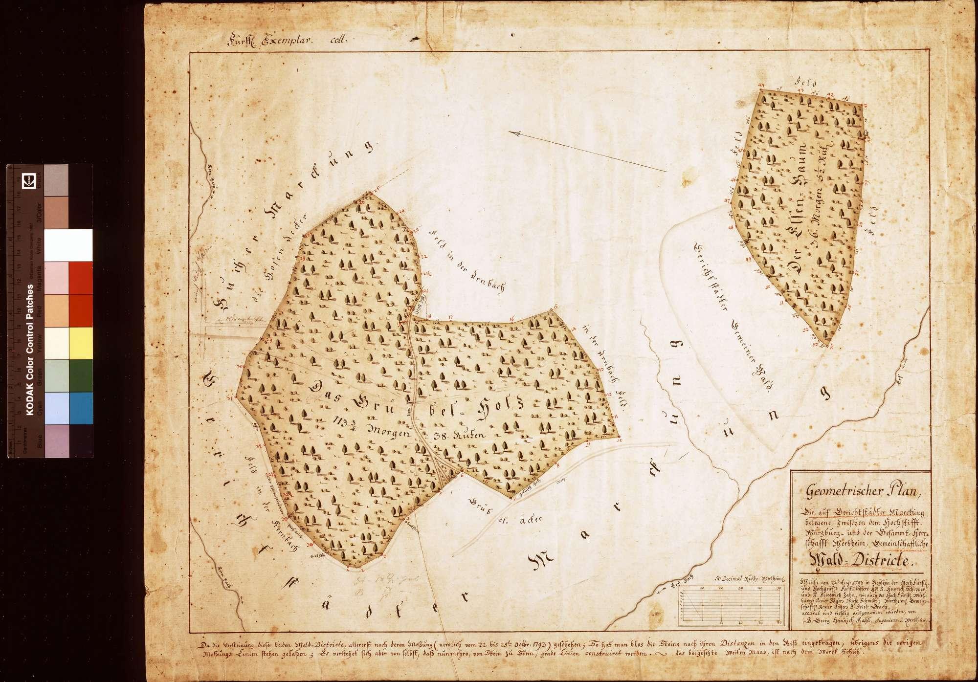 Zwischen dem Hochstift Würzburg und der Gesamtherrschaft Wertheim gemeinschaftliche Walddistrikte auf Gerichtstetter Markung gelegenen (Inselkarte), Bild 1