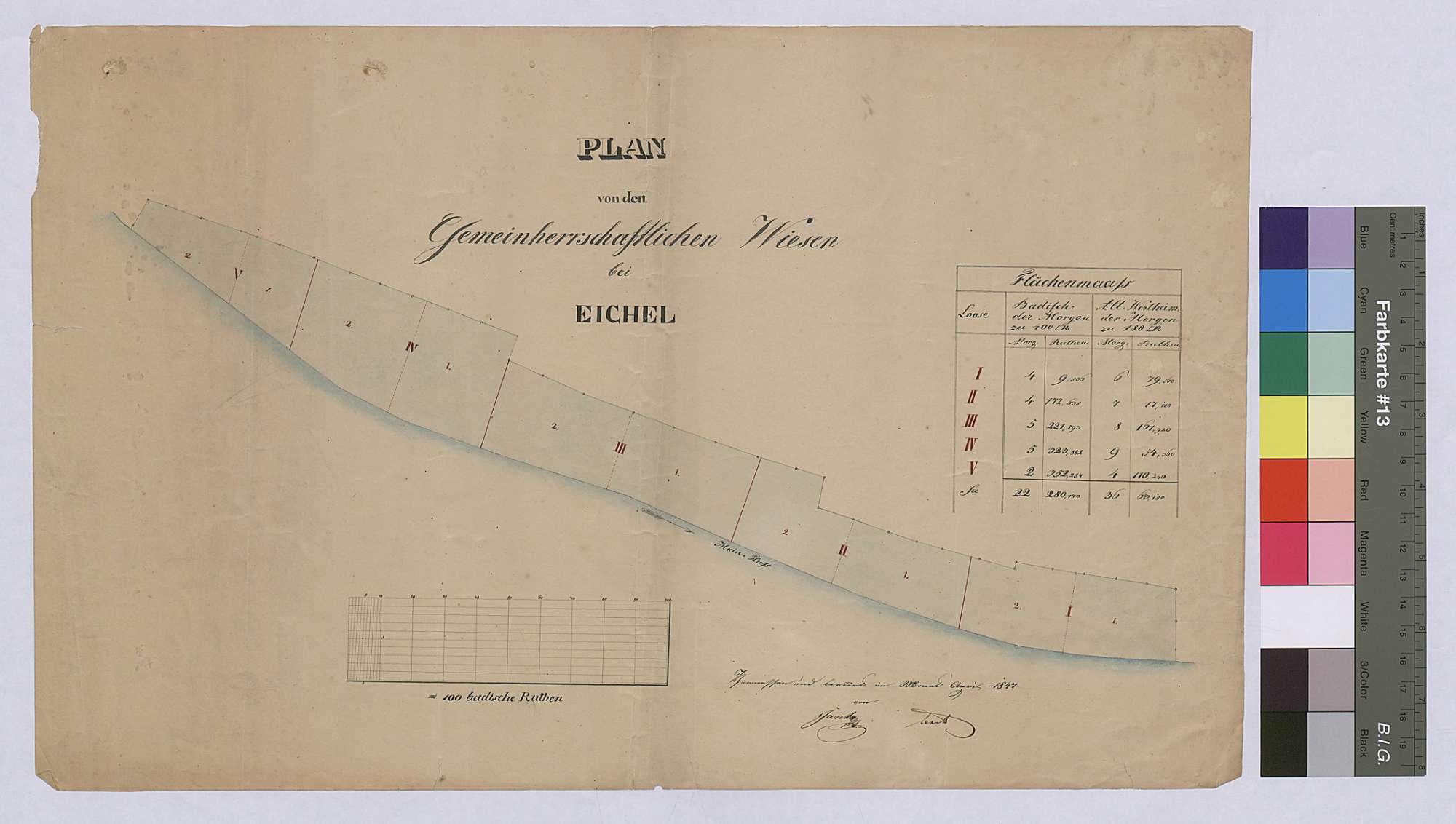 Gemeinherrschaftliche Wiesen bei Eichel (Inselkarte), Bild 1