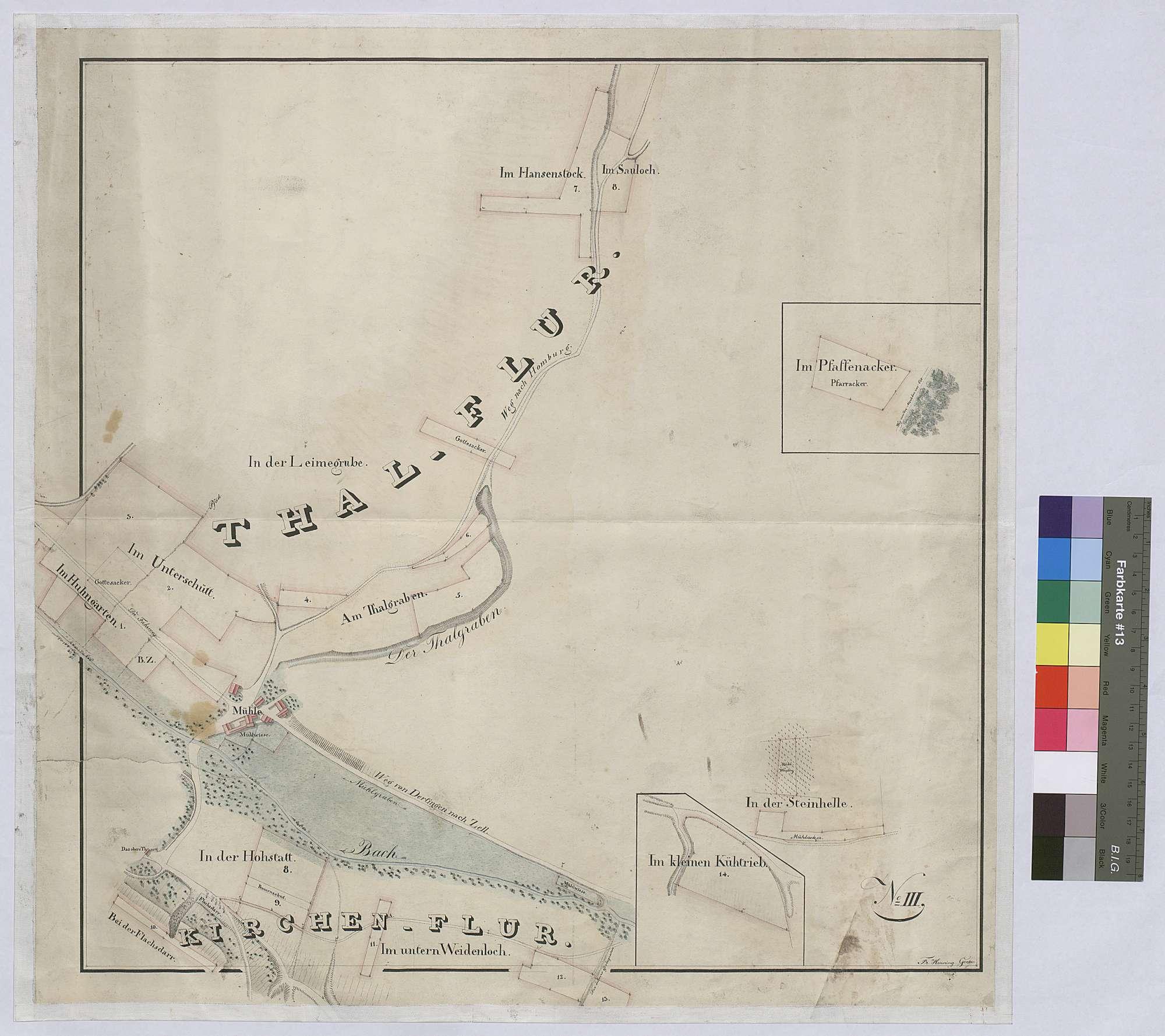 [Gemeinherrschaftliche Grundstücke auf der Gemarkung Dertingen] (Inselkarte), Bild 1