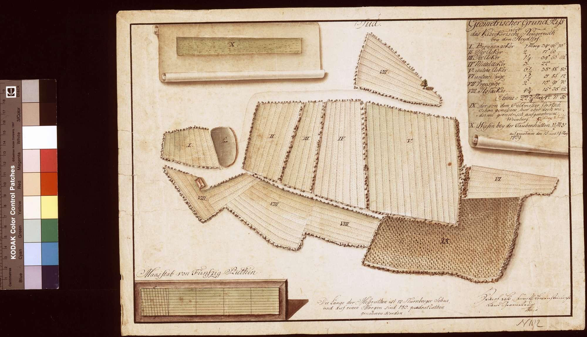 Geometrischer Grundriss über das Kieseckerische Neugereut bei dem Haidhof (Inselkarte), Bild 1